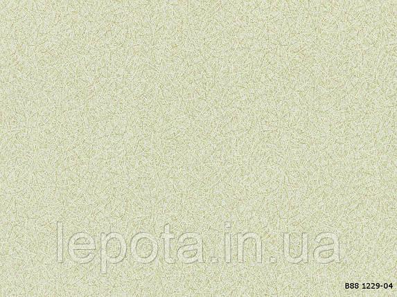В88 Эльба 1229-04, фото 2