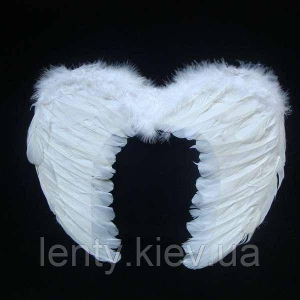 Крылья Ангела маленькие (с перьями)