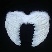 Крылья Ангела маленькие (с перьями), фото 1