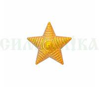 Зірка мала українська золота пластмасова