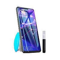 Защитное стекло PowerPlant для Samsung Galaxy Note 10 Plus (жидкий клей + УФ лампа)