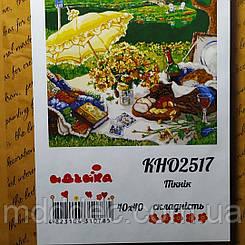 Картины по номерам - Пикник (КНО2517)