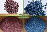 Семена подсолнечника Базальт (Экстра, F1), фото 2