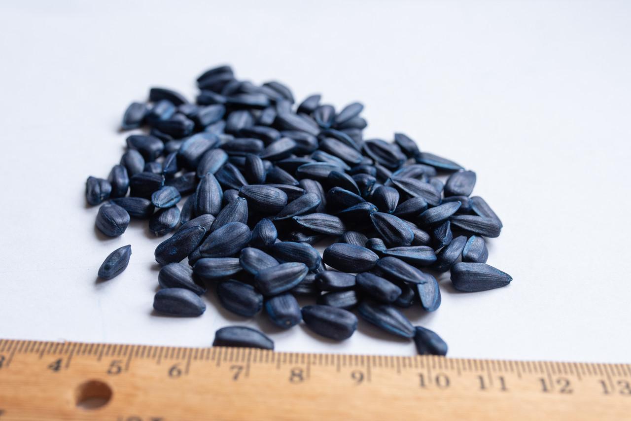 Семена подсолнечника Базальт (Экстра, F1)
