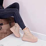 Жіночі черевики ЗИМА бежев - пудрові еко замш, фото 9