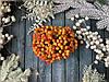 Глянцеві ягоди (калина) 400 шт/уп. 1 см , жовто-червоного кольору оптом НГ