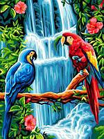 Картина по номерам 30×40 см Babylon Пара попугаем (VK 251)