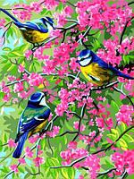 Картина по номерам 30×40 см Babylon Весенние синички (VK 253)