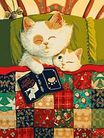 Картина по номерам 30×40 см Babylon Кошка с котенком (VK 256)