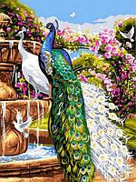 Картина по номерам 30×40 см Babylon Павлины у фонтана (VK 263)