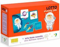 Настольная игра DoDo Лото 300136 Развивающая игра для детей!