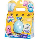Little Live Pets S2 Інтерактивна іграшка Курча в яйці сюрприз 28427 Chick Single Pack, фото 2
