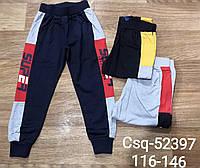Спортивные брюки для мальчиков Mr. David , 116-146 рр. Артикул: CSQ52397