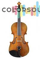 Акустическая скрипка, альт GLIGA AWV044 (Violin 4/4 Gems I)