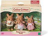 Sylvanian Families Calico Critters семья кенгуру Hopper Kangaroo Family, фото 3
