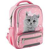 Kite Kids Дошкольный рюкзак Студия домашних животных котенок 2020 SP20-559XS Studio Pets, фото 3