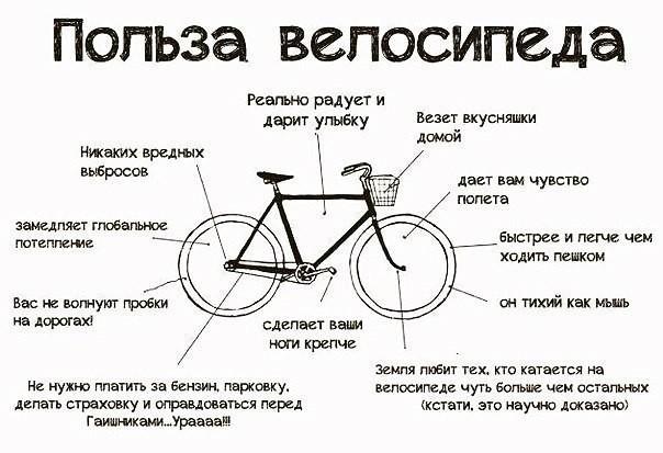 Польза велосипеда. Немного юмора, но в каждой шутке есть доля правды)