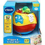 VTech Интерактивный развивающий мяч черепашка Wiggle and Crawl Ball, фото 7