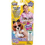 Little Live Pets OMG Интерактивный щенок собачка сквиш 26115 Rainbow Pop Squishy Puppy so Soft Have Talent, фото 4