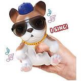 Little Live Pets OMG Интерактивный щенок собачка сквиш 26291 Hip Hop Squishy Puppy so Soft Have Talent, фото 2