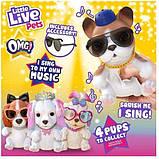 Little Live Pets OMG Интерактивный щенок собачка сквиш 26291 Hip Hop Squishy Puppy so Soft Have Talent, фото 4