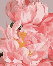 """Картини за номерами """"Ніжні квіти"""" 50*60 см"""