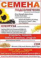 Посевной материал подсолнечника Прими**Новый Сад(Сербия