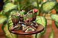 Глиняный цветочный горшок - милый малыш Грут из Стражей Галактики от Marvel с сердечком, фото 3