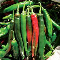 ИМПАЛА F1   - семена горького перца, CLAUSE 5 грамм