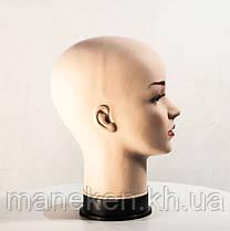 Голова Жен. Европейка, фото 3