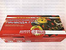 Комплект ремонтный привода ГРМ ЗМЗ Газель, Волга (Евро-2)