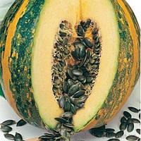 Нейкедсід насіння гарбуза голонасіннєвого (Servise plus (GSN))