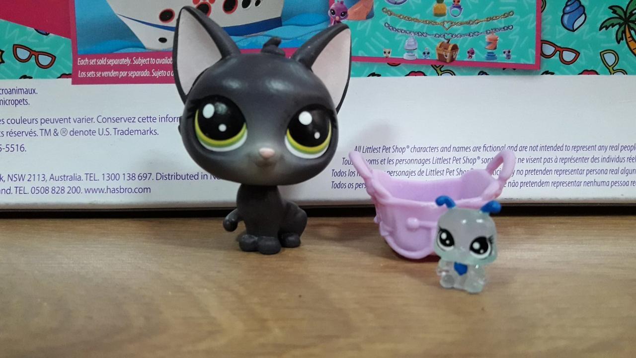 Littlest pet shop lps игрушка Hasbro лпс пет шоп кошечка jade catkin+аксессуар+произвольный пет
