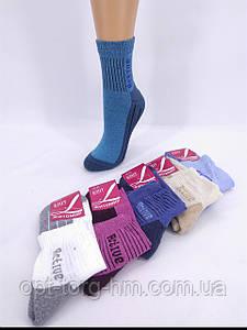 Стопа махрова. Напівмахрові жіночі шкарпетки Актив (37-40 ВЗУТТЯ)