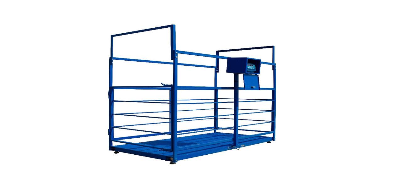 Весы для взвешивания свиней ВИС 500 кг 1250х600х700 мм