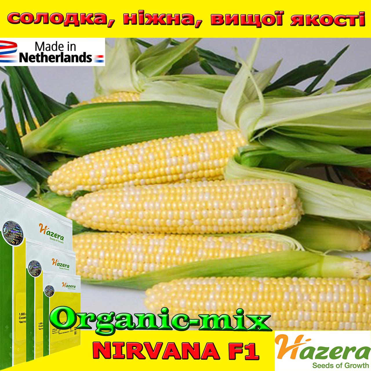 Семена, кукуруза сахарная двухцветная (биколор) Нирвана F1 (Нидерланды), 1000 семян, ТМ Hazera Seeds