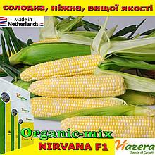 Кукуруза сахарная двухцветная, биколор Нирвана F1 / Ксанду F1 (Нидерланды), 5000 семян, ТМ Сrookham