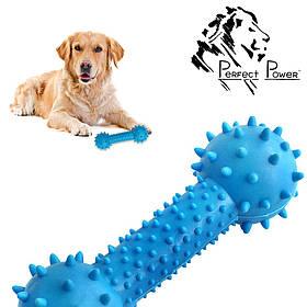 Резиновая гантелька массажер для десен 14 см Игрушка для собак шипованная гантель для чистки зубов Синяя