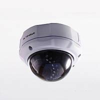 IP-видеокамера купольная Tecsar IPD-2M-30V-poe (IPD-2M-30V-poe)