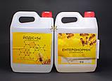 Энтеронормин с Йодис+Se (400г+2л - 100 доз), фото 6