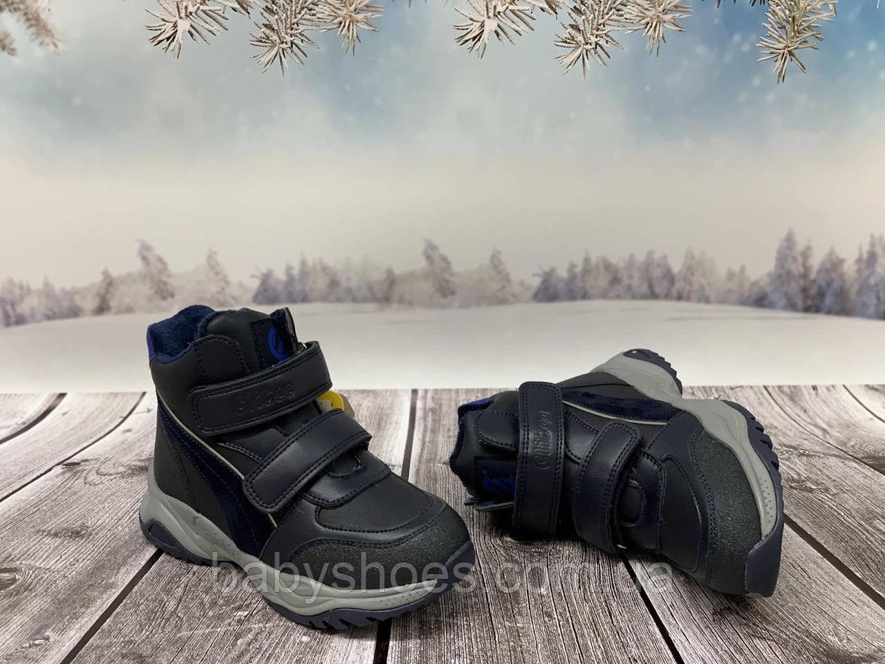 Зимние ботинки для мальчика, Clibee, синие, р.32-37, ЗМ-272