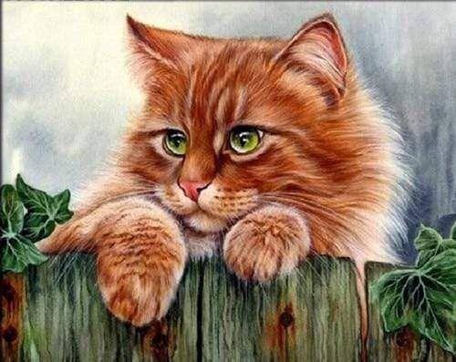 """Картина за номерами """"Рудий кіт"""" 40*50 см, фото 2"""