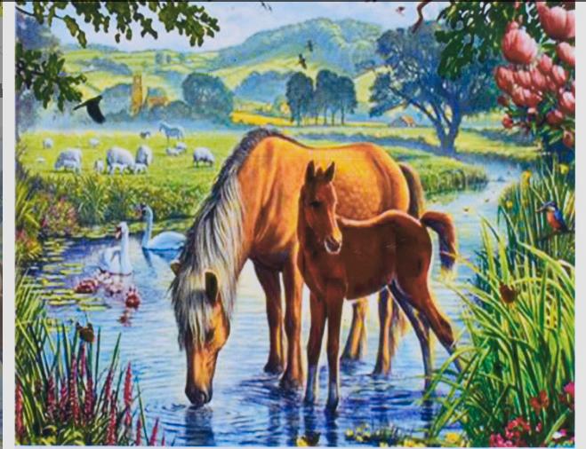 Картина по номерам на холсте Лошадки RA 3144 в коробке, 50х40 см