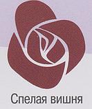 SC-31-0.35кг Краска - колер «BABY SMILE»Premium водо-дисперсионная.Спелая вишня, фото 2