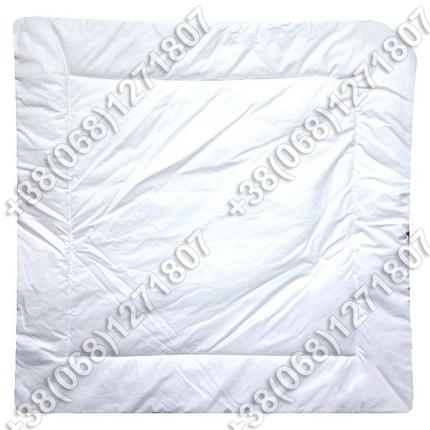 Зимний конверт одеяло на выписку для новорожденного Птички, фото 2