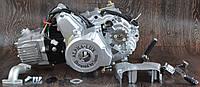 Двигатель на мопед Альфа Дельта 110 куб механика 21, КОД: 1548778