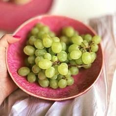 Рожевий салатник керамічний професійний посуд для кафе ресторанів і вдома 17,5х5 см