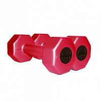 Гантели пластиковые для фитнеса InterAtletika ST560.2 2 кг