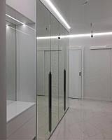 Зеркальный шкаф с распашными дверями в прихожую