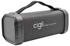 Портативная Bluetooth колонка Cigii F62D Original, фото 2